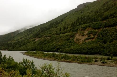 Low Clouds in Denali
