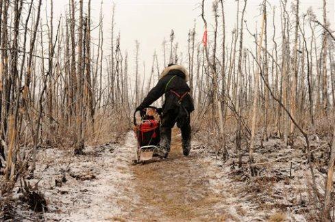 2014 Iditarod Farewell Burn