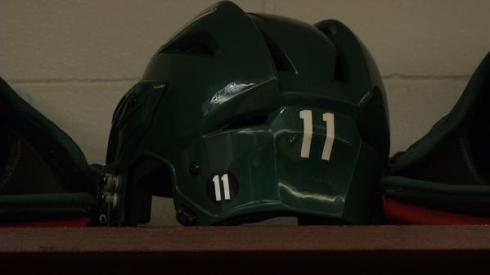 Wild Helmet
