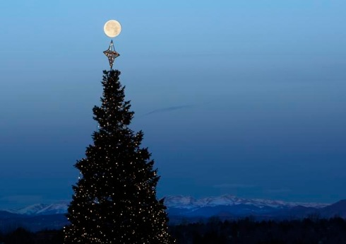 Moon over a Christmas tree