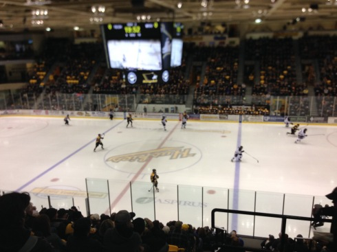 Center ice at The Mac