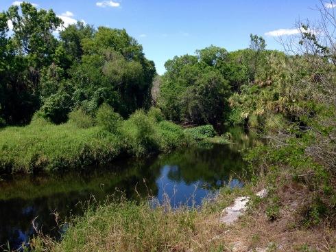 Little Manatee River