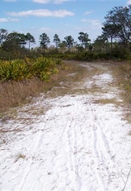 Manatee trail